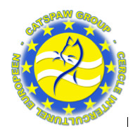 CATSPAW GROUP